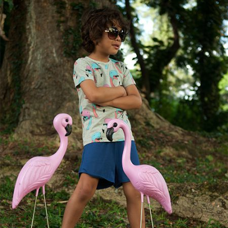 Gardner and the Gang T-Shirt Helmut Flamingo